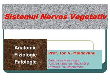 Sistemul nervos vegetativ [usmf]